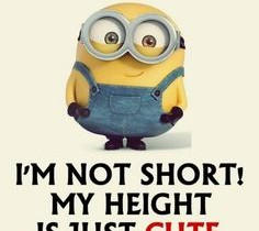 Make Me Laugh Monday (Short people problems)